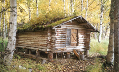 Remote Cabin Rental